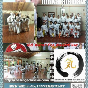 Okinawa Karate do Ribukai