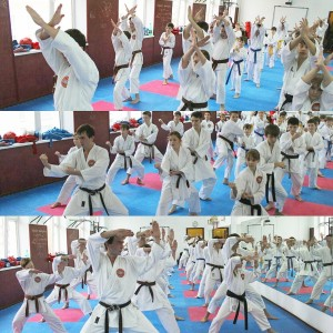 World Shotokan Moscow 2
