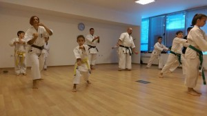 Karate club Ronin, Sofia, Bulgaria