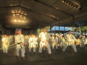 Okinawa Shorin-Ryu Karate-Do Jyureikan do Brasil