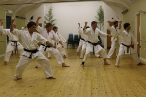 Sizewell and Leiston Karate clubs (Seishin KyoKai) Leiston United Kingdom 2